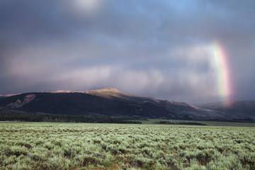 Lichtstimmung im Grand Teton