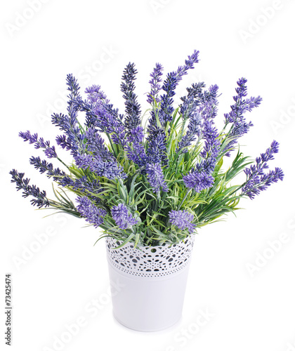 Naklejka pot with lavender isolated on a white