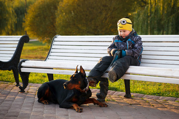 The boy and the dog Doberman Pinscher