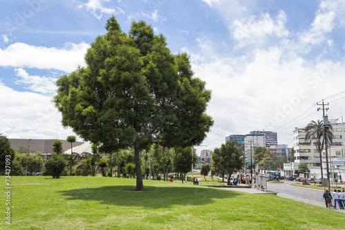 Foto op Plexiglas Havana El Arbolito park Quito Ecuador South America