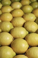 Italy, Sicily, sicilian lemons for sale