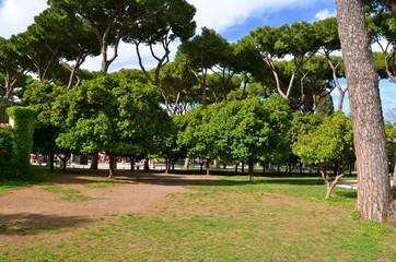 Orange Garden (Giardino degli Aranci), Rome