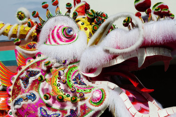Side of Chinese Dragon Head Outdoors Parade