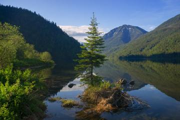 Summer at the Lake Sobolinoye