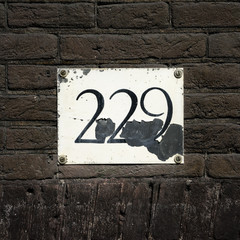 Number 229