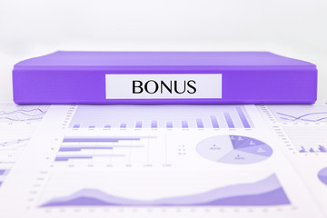 Bonus documents, graphs analysis and financial report
