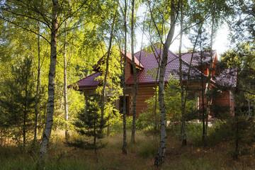 Hausbau im Wald