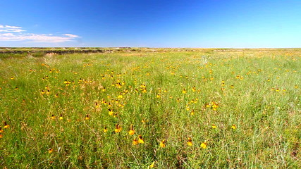 Buffalo Gap National Grassland