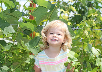 Blond kid girl in the green grapes bush