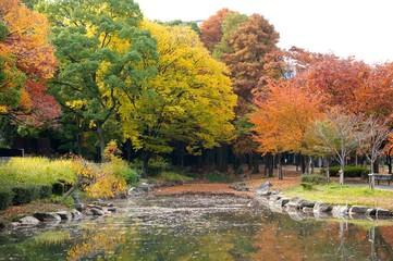 毛馬桜宮公園