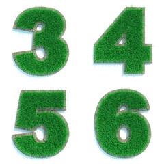 Digits 3, 4, 5, 6 of Green Lawn.