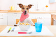 canvas print picture - hungry dog