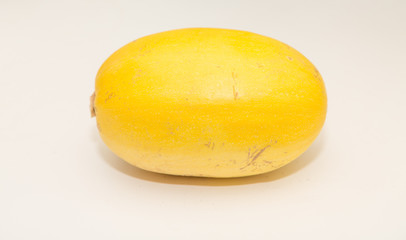 Fresh Whole Spaghetti Squash on White Counter