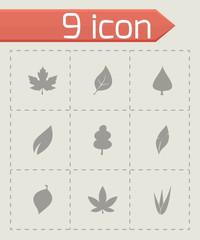 Vector leaf icon set