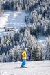 ski alpine