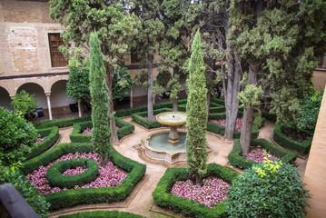 Patoi, Granada, Andalusia, Spain