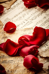 Music sheets with rose petals