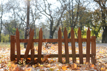 Abandoned fence in park