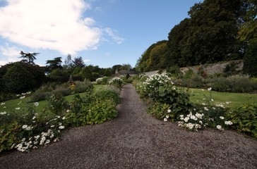 foothpath in english style garden