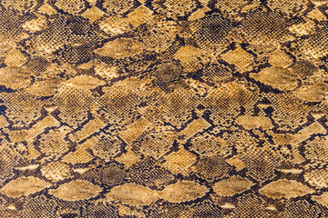 texture of fabric stripes snake leather