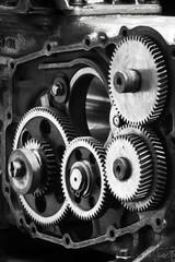 Gears vertical