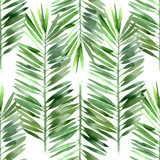 Fototapety watercolor palm tree leaf seamless