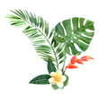 watercolor tropical plants - 73473820