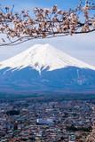 The mount Fuji - 73479422