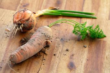 Karotte und Zwiebel