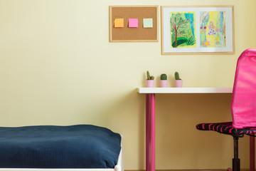 Desk for schoolgirl