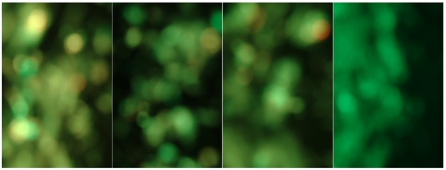 Abstract collage with green color and lights