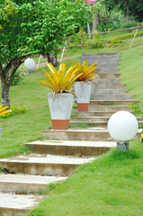 Stone stair and big flower pots in nice garden