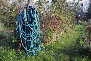Long coiled water hose