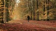 Man running through an autumn colored lane in the forest.