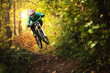 canvas print picture - Mountainbiker rides in autumn forest