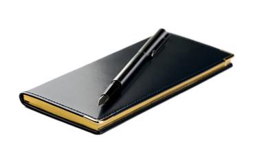 Organizer and fountain pen