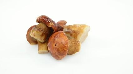 porcini mushrooms rotating on white background