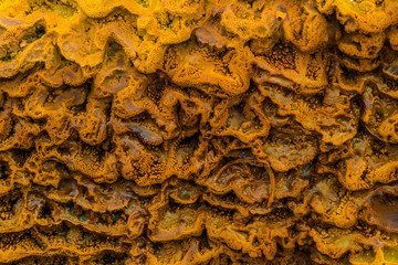Layers of limestone travertine near the Crystal Geyser Utah Clos