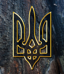 Ukraine Coat of Arms. Gold on wood texture