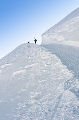 Group of skiers walks up the hill - vertical.