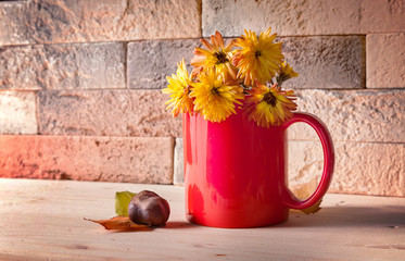 Yellow flowers in red cup