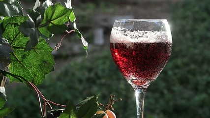 Sparkling Red Wine