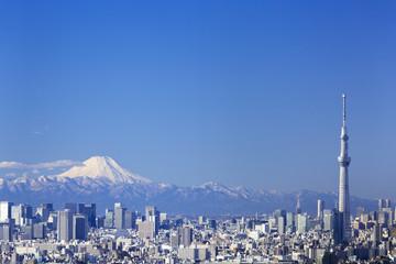 快晴青空・富士山と東京スカイツリーそして東京都心の高層ビル群を一望