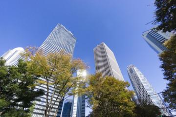 青空の新宿高層ビル街を見上げる。(超広角)