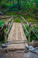 The bamboo  bridge in rain forrest