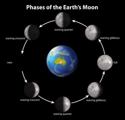 Phases of the Earth's moon