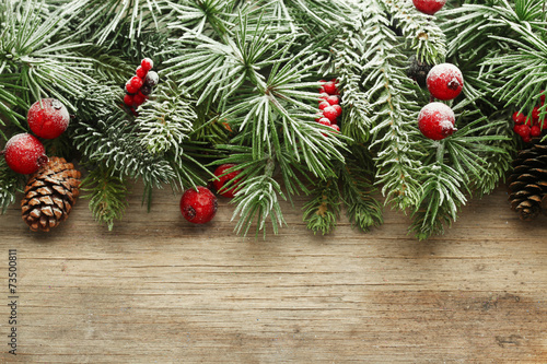 Christmas tree branches background - 73500811