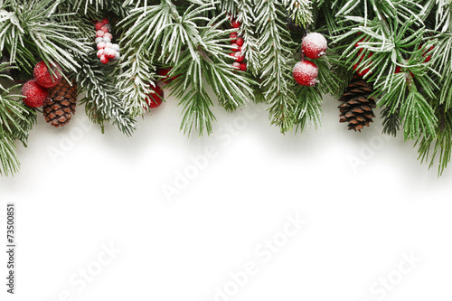 Foto Spatwand Bomen Christmas tree branches background
