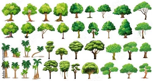 Tree set - 73501016