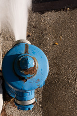 blue fire hydrant